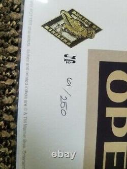 Harry Potter New York Grand Ouverture Signé Minalima Print Edition Limitée 61/250