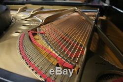 Steinway B Grand Piano 6'10 Satin Ebony Signée Par Henry Steinway! Réduit